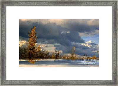 Framed Print featuring the photograph Autumn Skies  by Elfriede Fulda