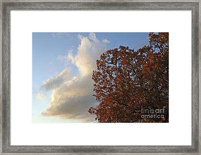 Autumn Sky Framed Print by Jeannie Burleson