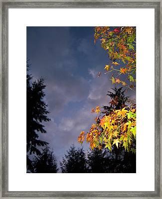 Autumn Sky Framed Print by Ken Day