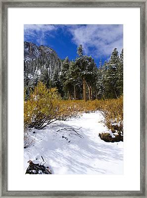Autumn Snow Framed Print by Chris Brannen