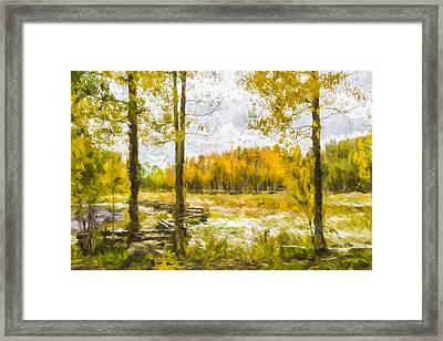 Autumn Snow Fall II Framed Print