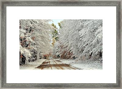 Autumn Snow In Pure Michigan Framed Print by Terri Gostola