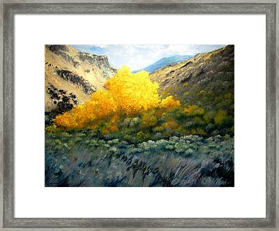 Autumn-southhills Framed Print
