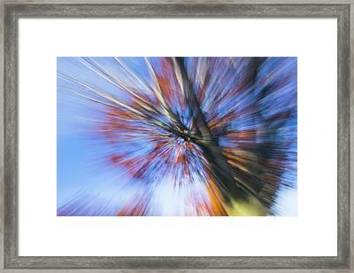 Autumn Splash Framed Print