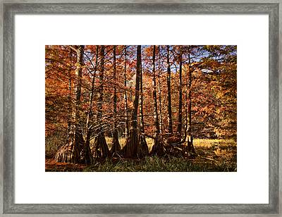 Framed Print featuring the photograph Autumn Splendor At Lake Murray by Tamyra Ayles