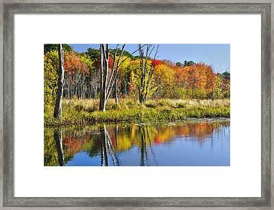Autumn Splendor - Bolton Flats Framed Print by Luke Moore