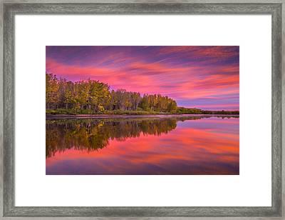 Autumn Splendor Framed Print by Darren White