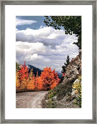 Autumn Splendor Framed Print