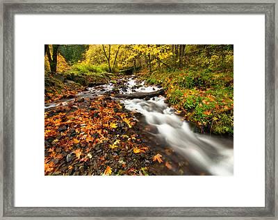 Autumn Split Framed Print by Mike  Dawson