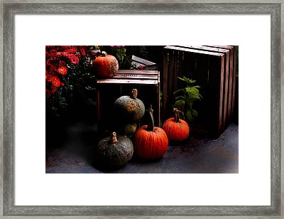 Autumn Squash Framed Print