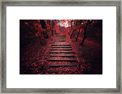 Autumn Stairs Framed Print