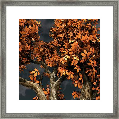 Autumn Storm Framed Print