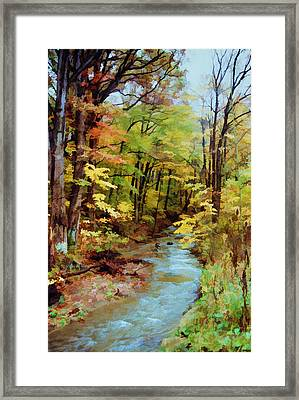 Framed Print featuring the photograph Autumn Stream by Diane Alexander