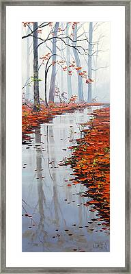 Autumn Stream Framed Print by Graham Gercken