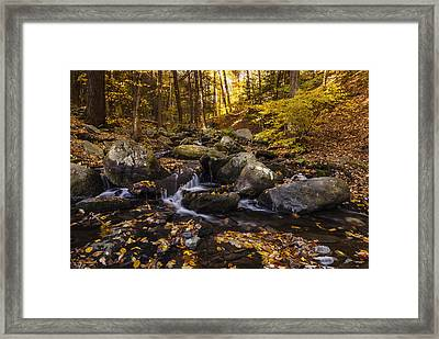 Autumn Stream In Bushkill Falls State Park Pennsylvania Usa Framed Print by Vishwanath Bhat