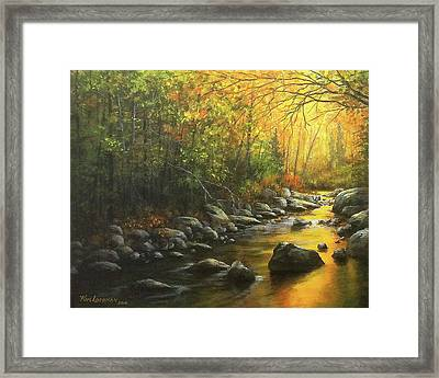 Autumn Stream Framed Print by Kim Lockman
