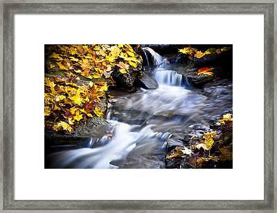 Autumn Stream No 2 Framed Print by Kamil Swiatek