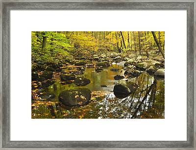 Autumn Stream Reflections Framed Print by Stephen  Vecchiotti