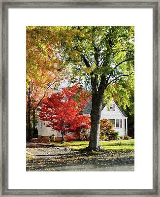 Autumn Street With Red Tree Framed Print by Susan Savad