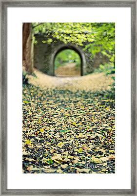 Autumn Stroll Framed Print by Meirion Matthias