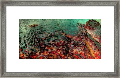 Framed Print featuring the photograph Autumn Submerged by David Patterson