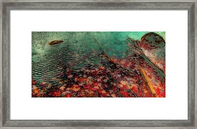 Autumn Submerged Framed Print