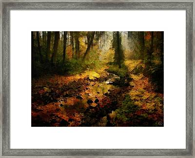 Autumn Sunrays Framed Print