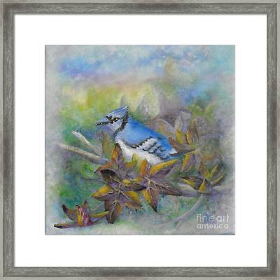 Autumn Sweet Gum With Blue Jay Framed Print by Sheri Hubbard