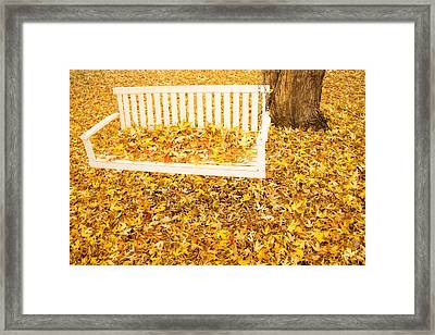 Autumn Swing Framed Print by James BO  Insogna