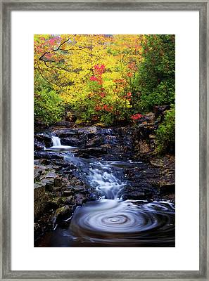 Autumn Swirls Framed Print