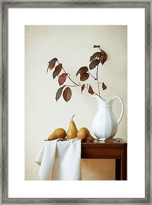 Autumn Tableau Framed Print