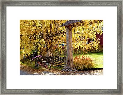 Rural Rustic Autumn Framed Print by Tamara Sushko