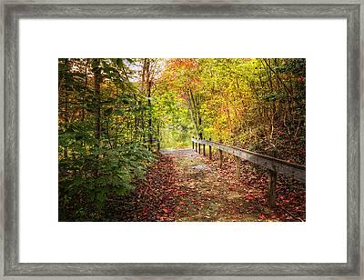 Autumn Trails Framed Print by Debra and Dave Vanderlaan