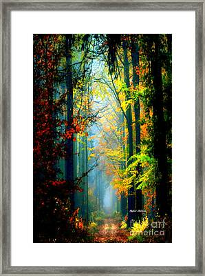 Autumn Trails In Georgia Framed Print