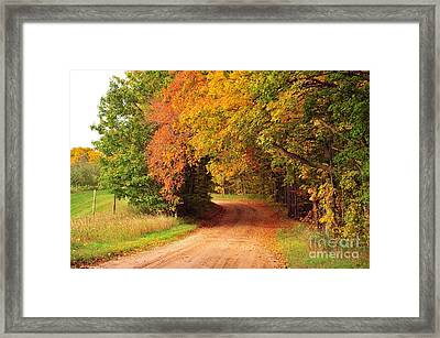 Autumn Tree Tunnel Heaven Framed Print