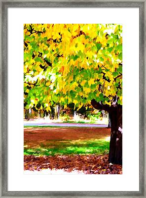 Autumn Trees 6 Framed Print by Lanjee Chee