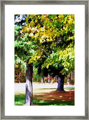 Autumn Trees 7 Framed Print by Lanjee Chee