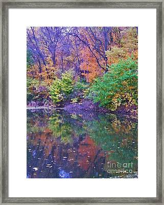 Autumn Trees And Pond Reflections  Vertical Image   Indiana Framed Print by Rory Cubel