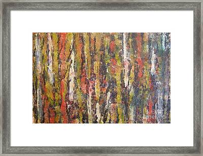 Autumn Trees Framed Print by Don Phillips