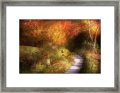 Autumn - Trees - Heaven's Trail Framed Print