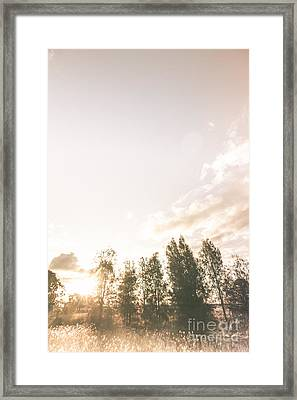 Autumn Trees In Light Evening Fields Framed Print by Jorgo Photography - Wall Art Gallery