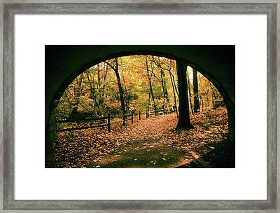 Autumn Tunnel Vision Framed Print by Jessica Jenney