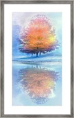 Autumn Turns Into Winter Framed Print by Debra and Dave Vanderlaan