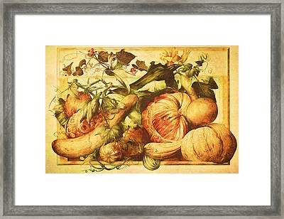 Framed Print featuring the digital art Autumn Vegetable Harvest  by Tracie Kaska