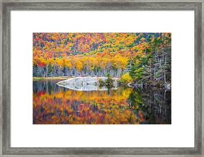Autumn Vibrance Framed Print by Black Brook Photography