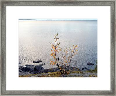 Framed Print featuring the photograph Autumn View 3 by Sami Tiainen