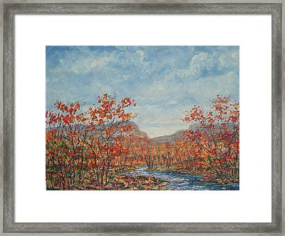 Autumn View. Framed Print
