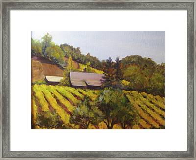Autumn Vineyard Framed Print by Bonnie Rosen