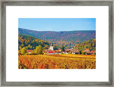 Autumn Vineyard Palatinate  Pfaizerwald Region Germany Framed Print