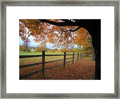 Framed Print featuring the photograph Autumn Vista by Don Struke